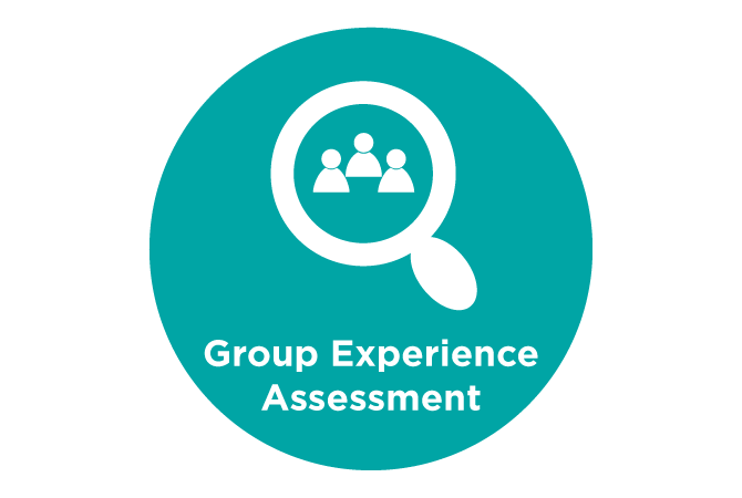 Group Experience Assessment